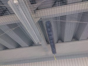 弥富市 工場 ハト飛来防止工事4